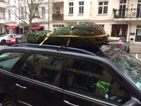 kerstboom op het autodak